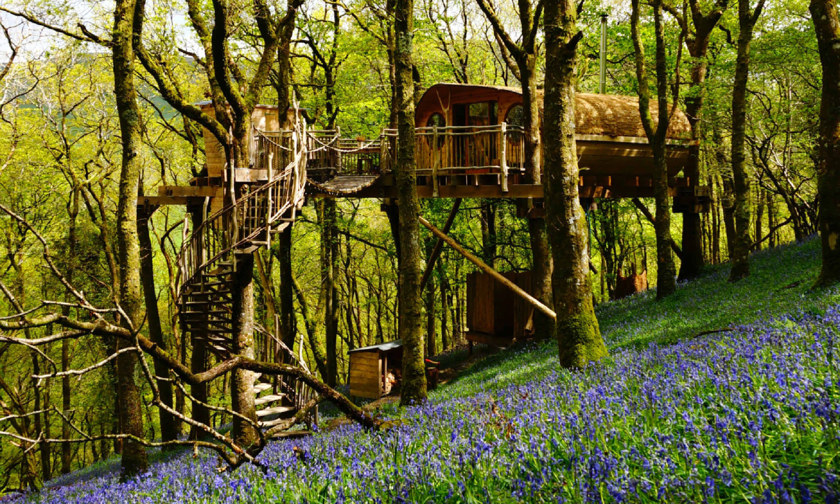 Living Room Treehouses (Canopy and Stars) & 9 of the best treehouses in the UK | Wanderlust