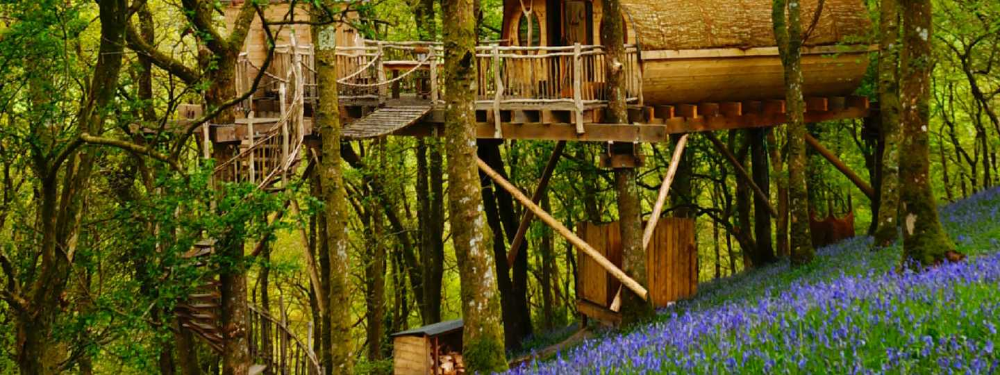 Living Room Treehouses (Supplied)