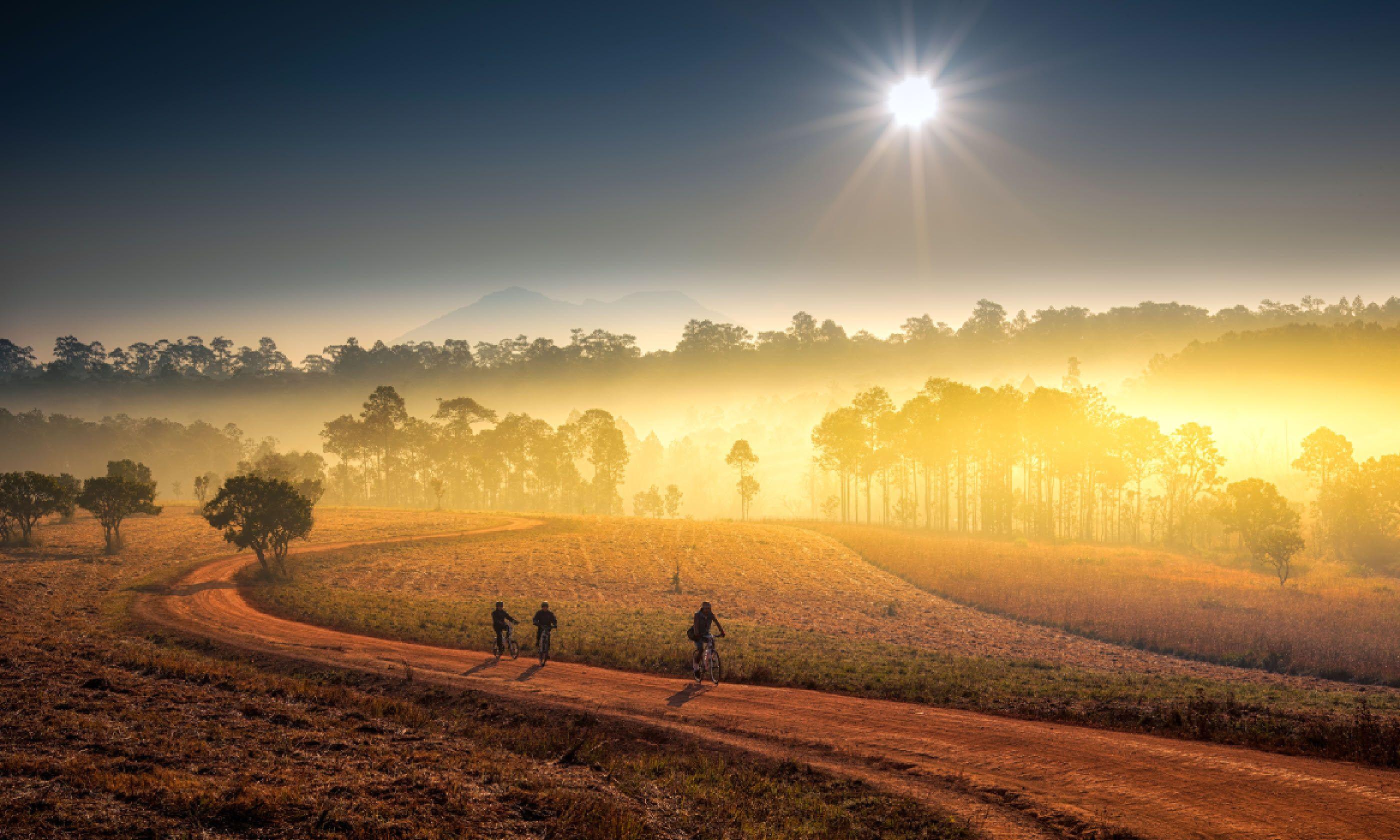 Mon Jong, Chiang Mai (Shutterstock)