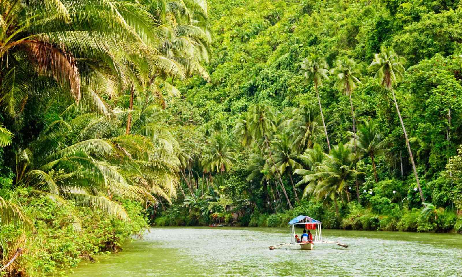Amazonian riverboat (Shutterstock)