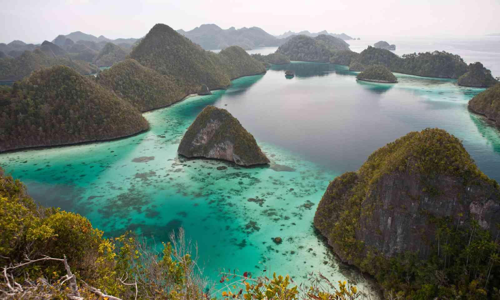 Limestone islands in Raja Ampat, Indonesia (Shutterstock)