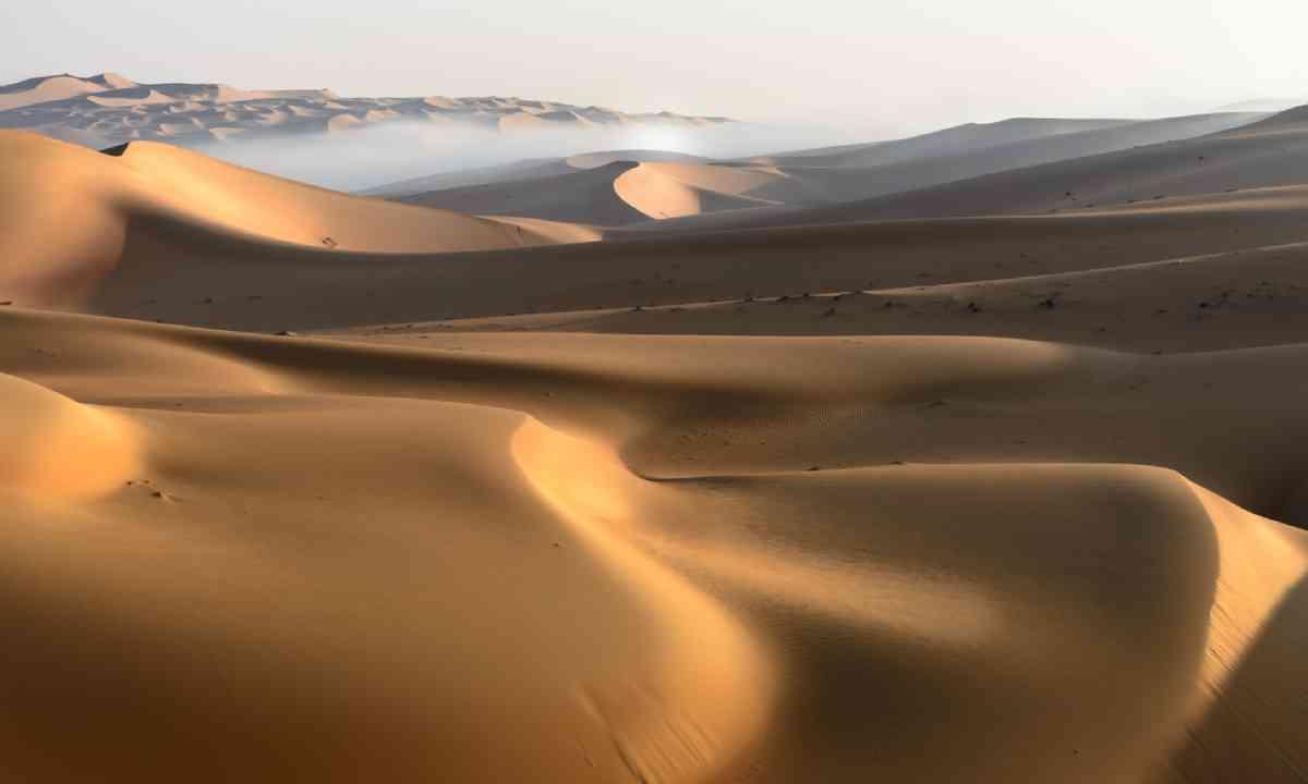 Liwa Desert, UAE (Shutterstock)