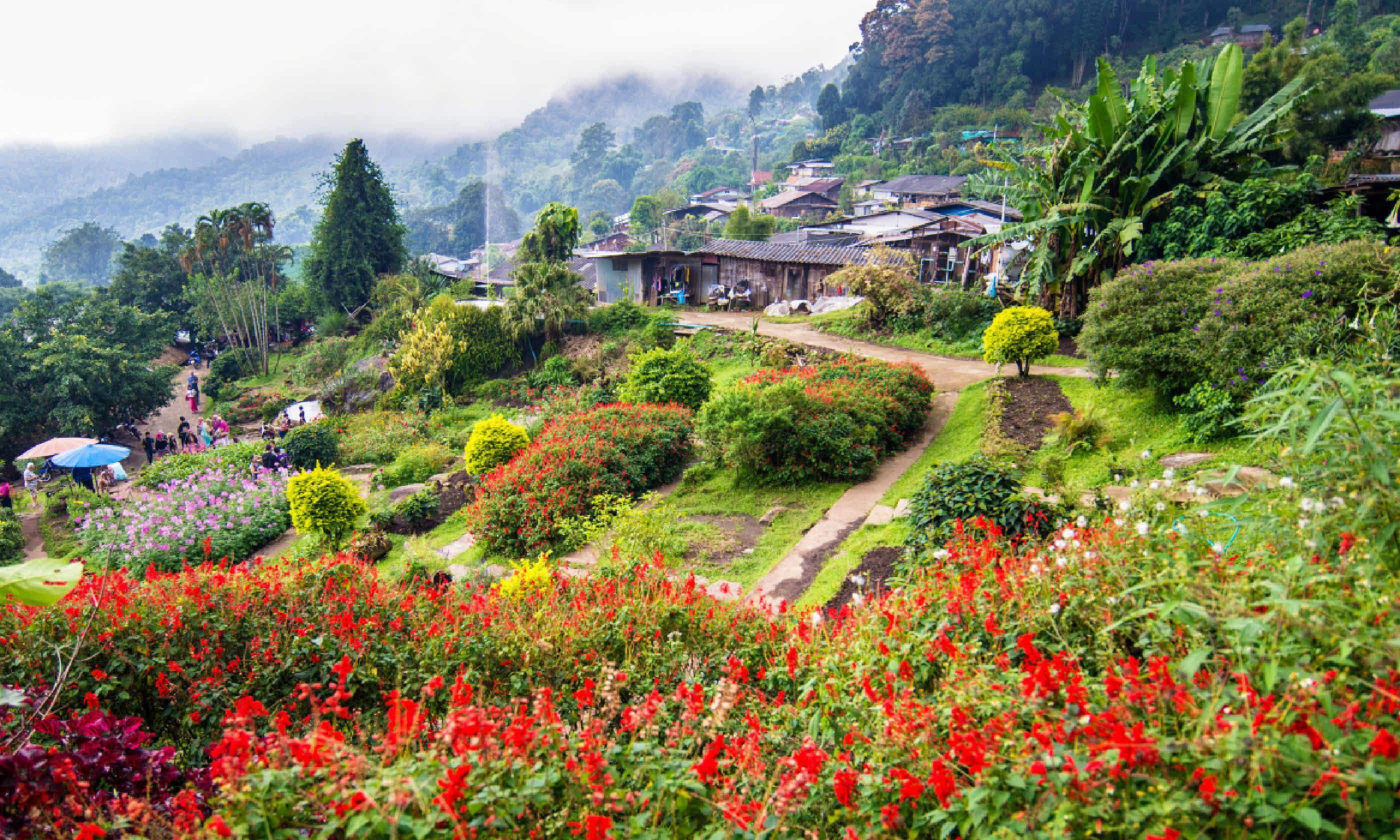 Chiang Rai, Thailand (Shutterstock)