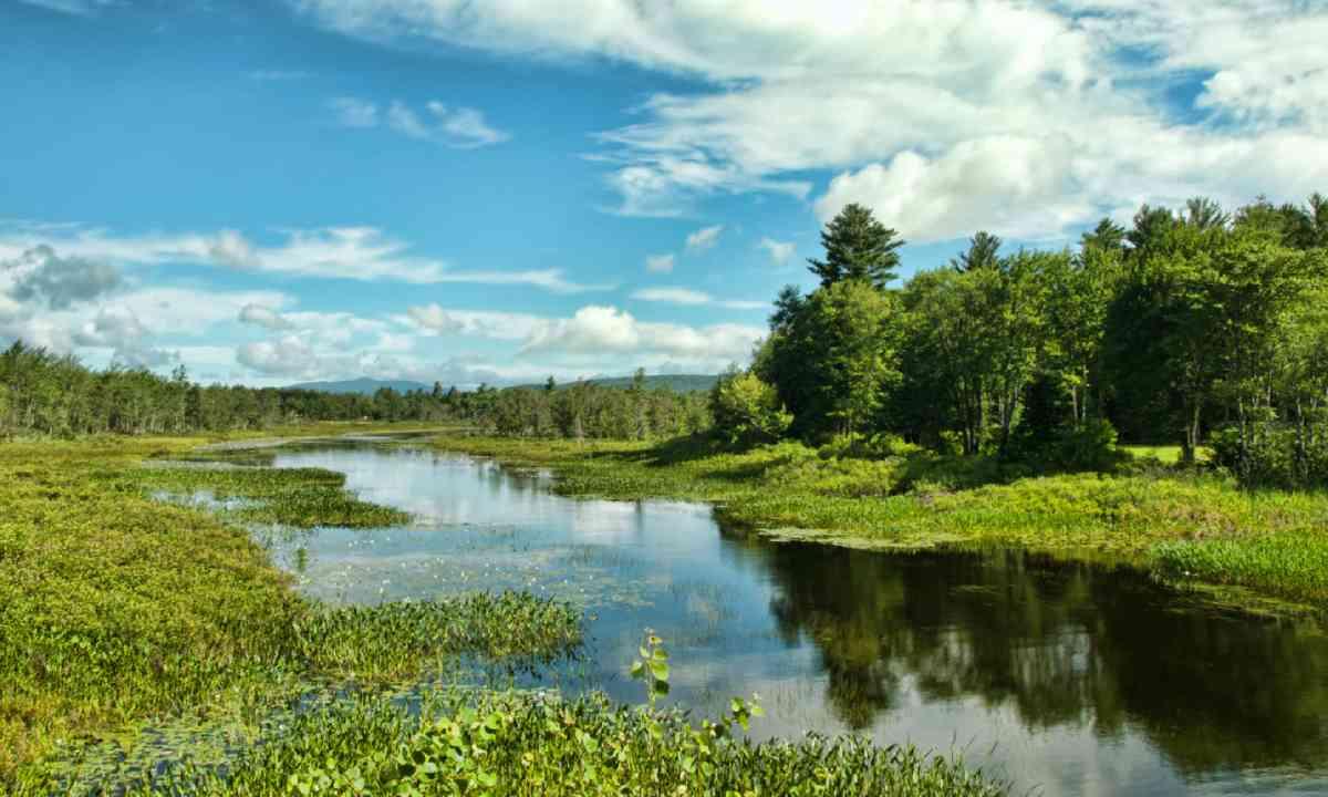 Adirondack State Park (Shutterstock)