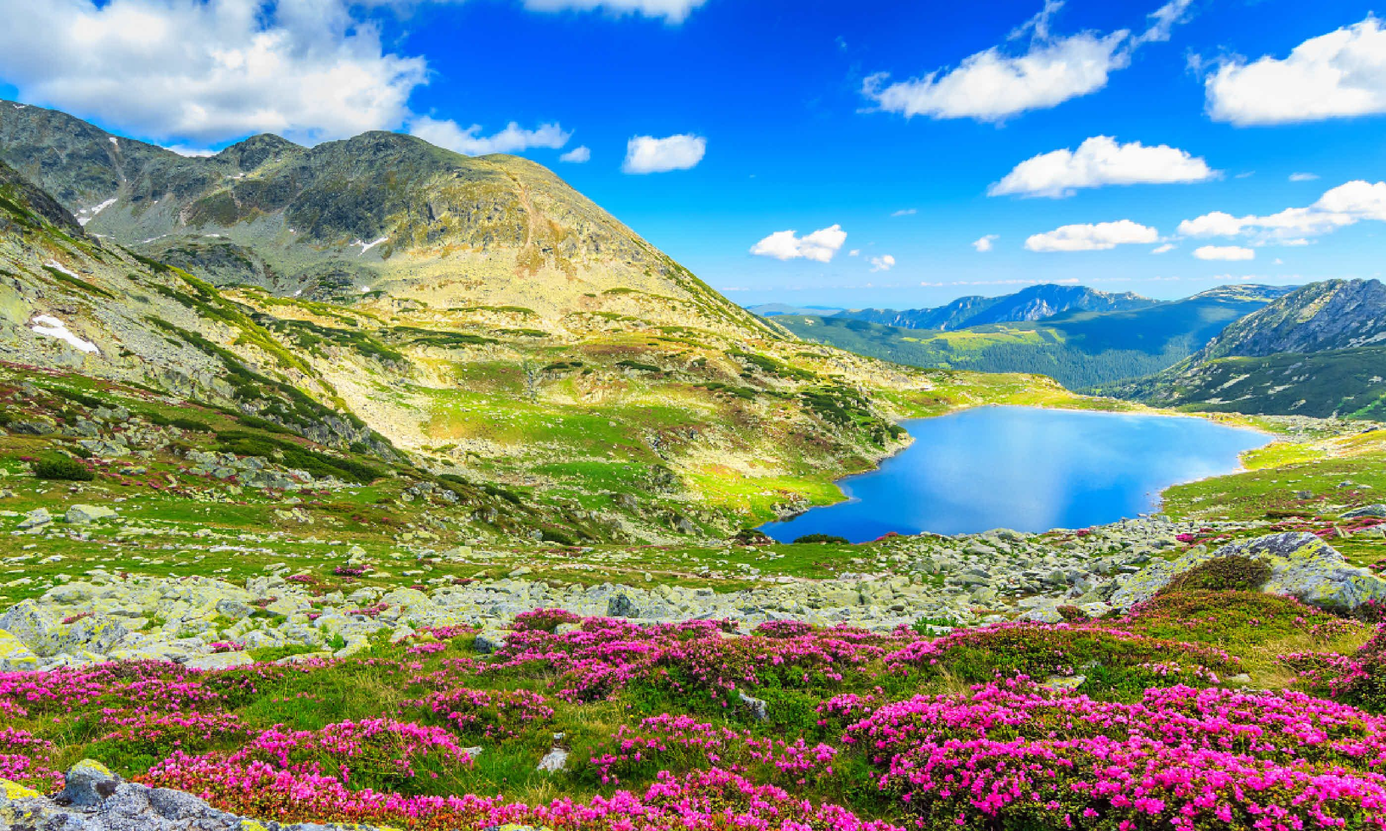 Carpathians, Romania (Shutterstock)