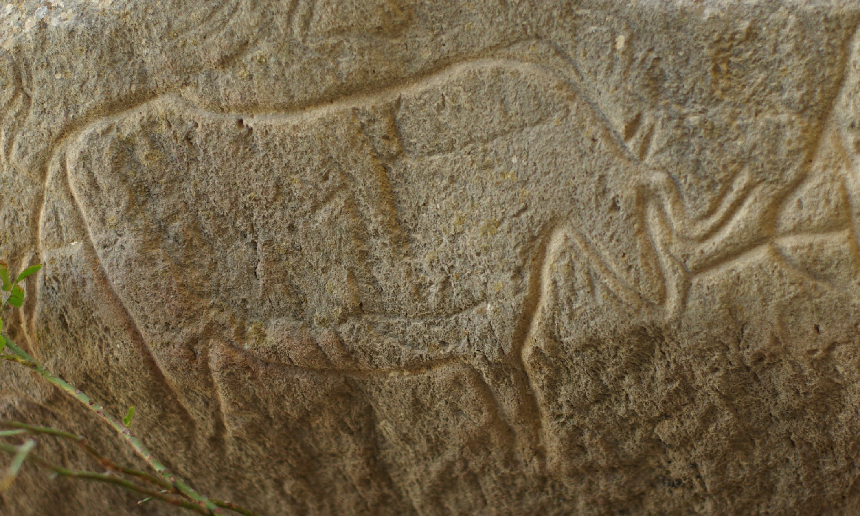 10,000-year-old engravings in Qobustan National Park (Shutterstock)