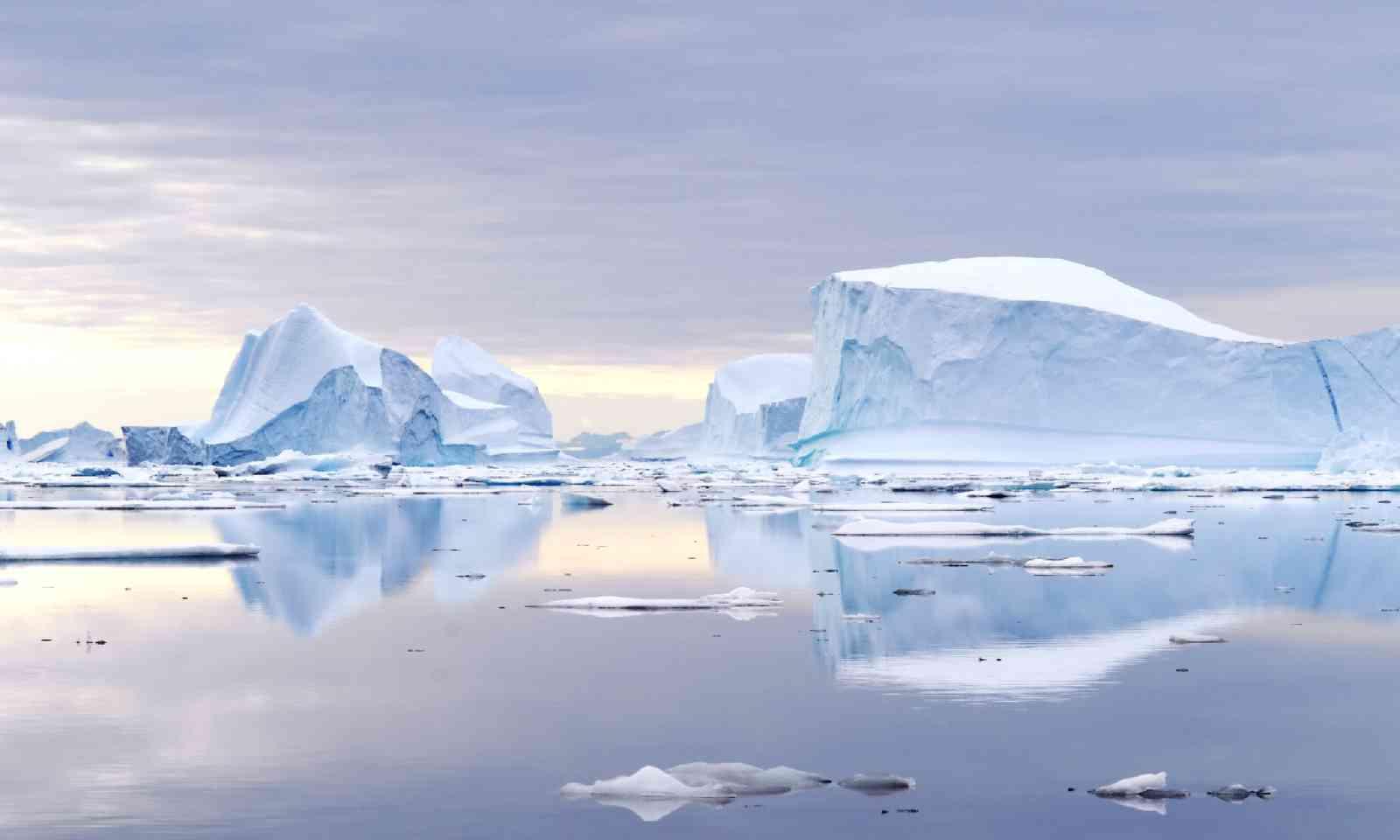 Northeast Greenland National Park (Shutterstock)