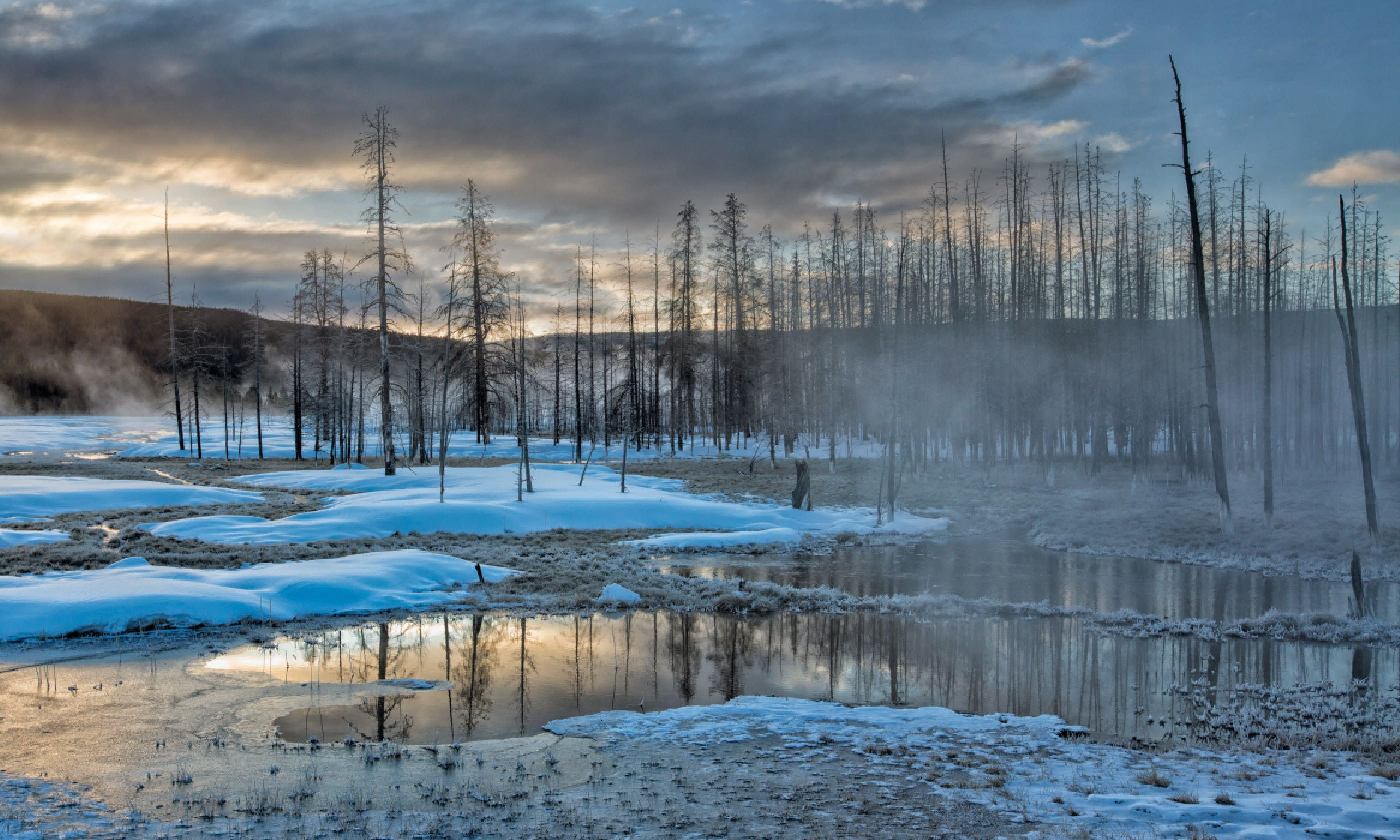 Dawn in Yellowstone National Park (Shutterstock)