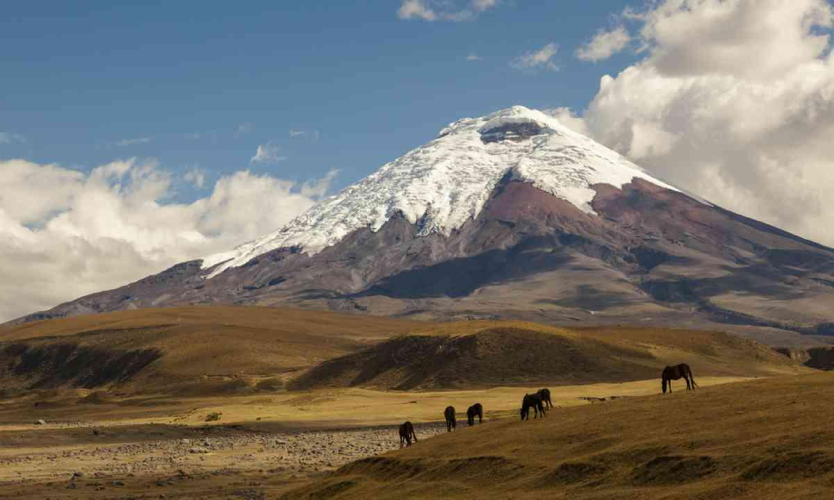 Cotopaxi volcano (Shutterstock)