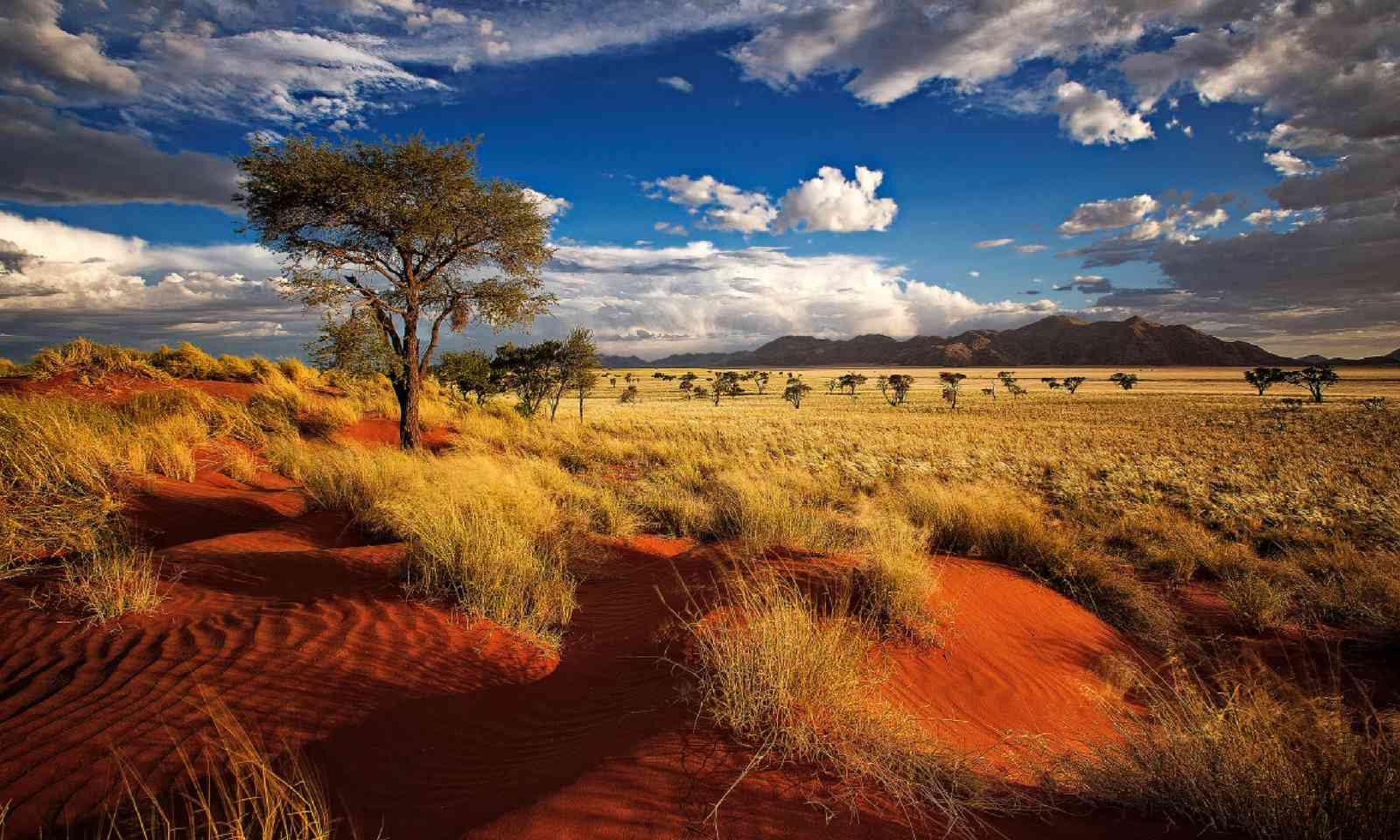 Private nature reserve in Namibia (Shutterstock)