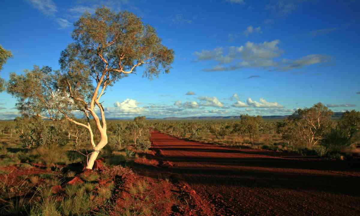 Western Australia outback (Shutterstock)