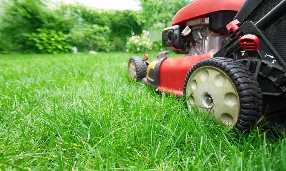 Lawn mower (Shutterstock)