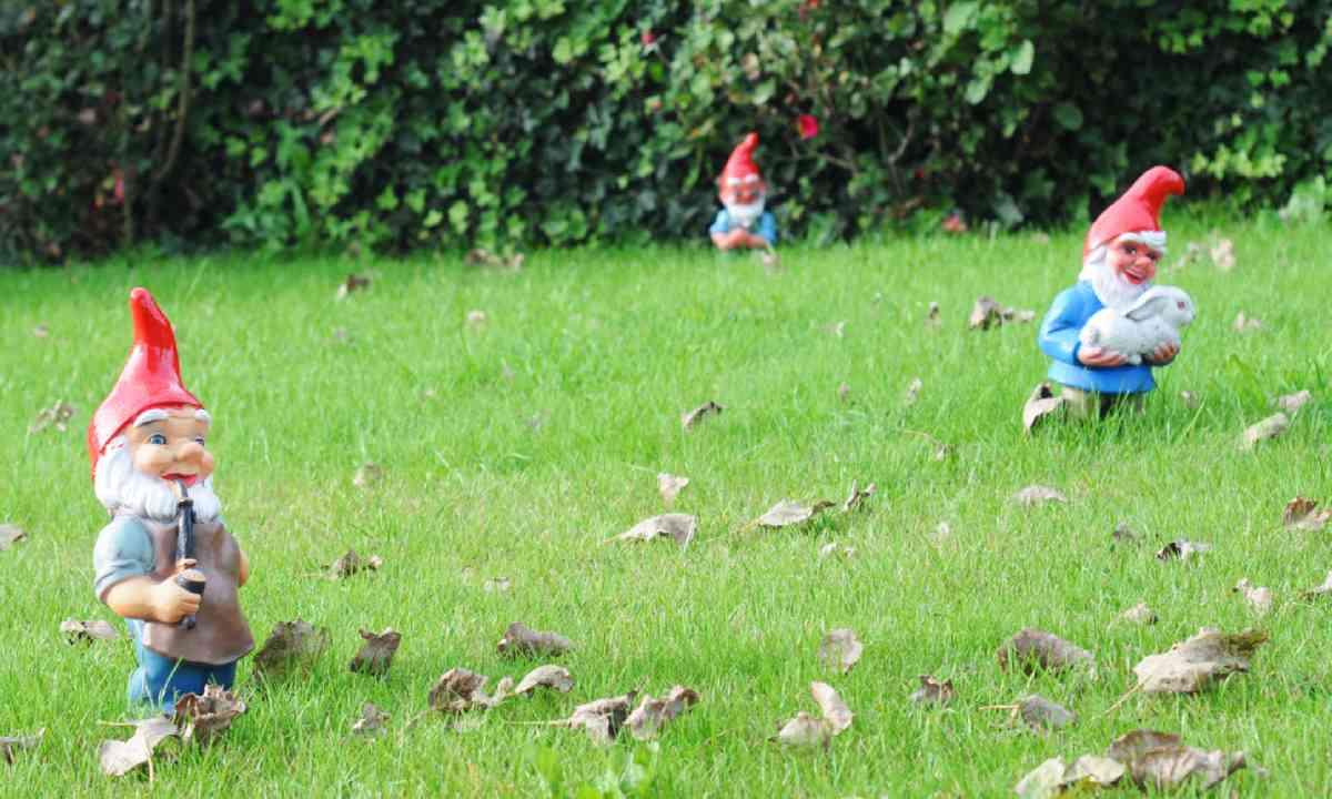 Garden gnomes (Shutterstock)