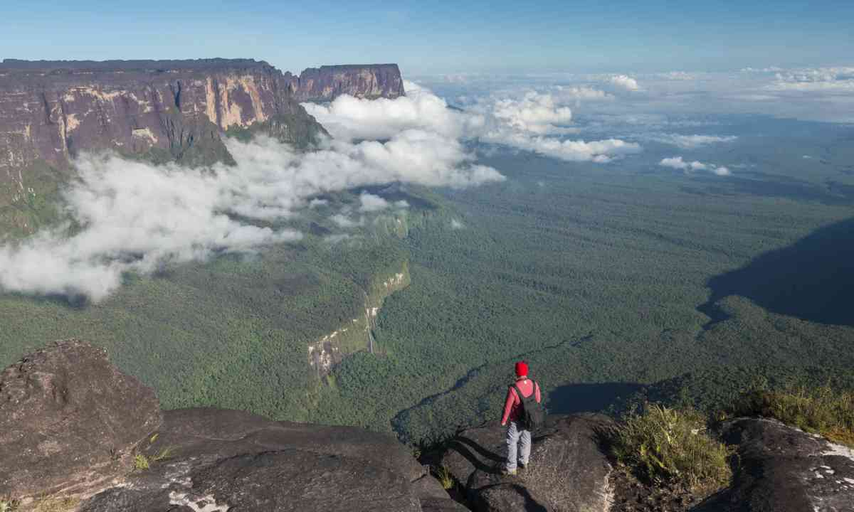 View from Roraima Tepui (Shutterstock)