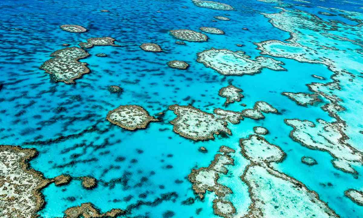 Great Barrier Reef (Shutterstock)