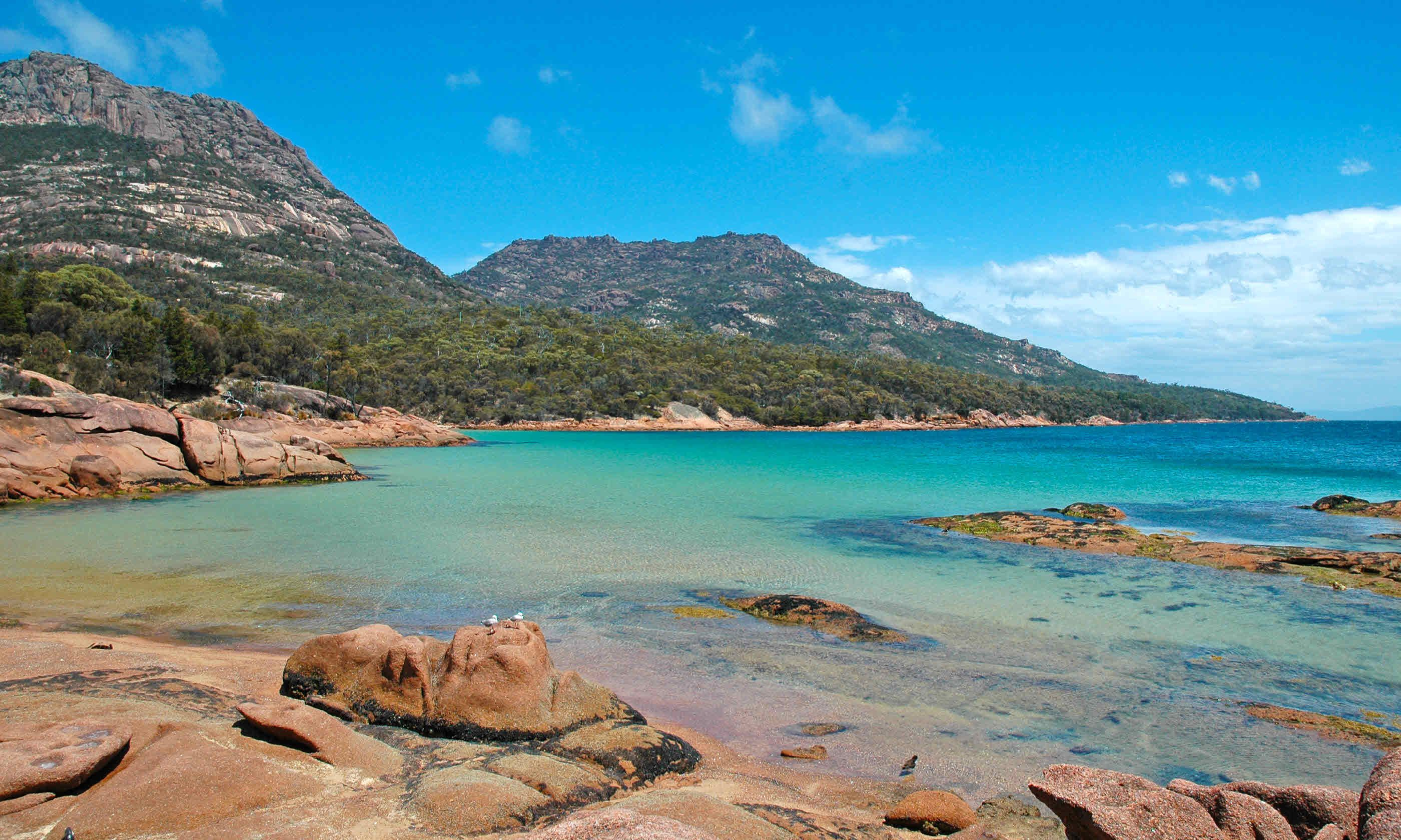 Tasmanian Coast (Shutterstock)