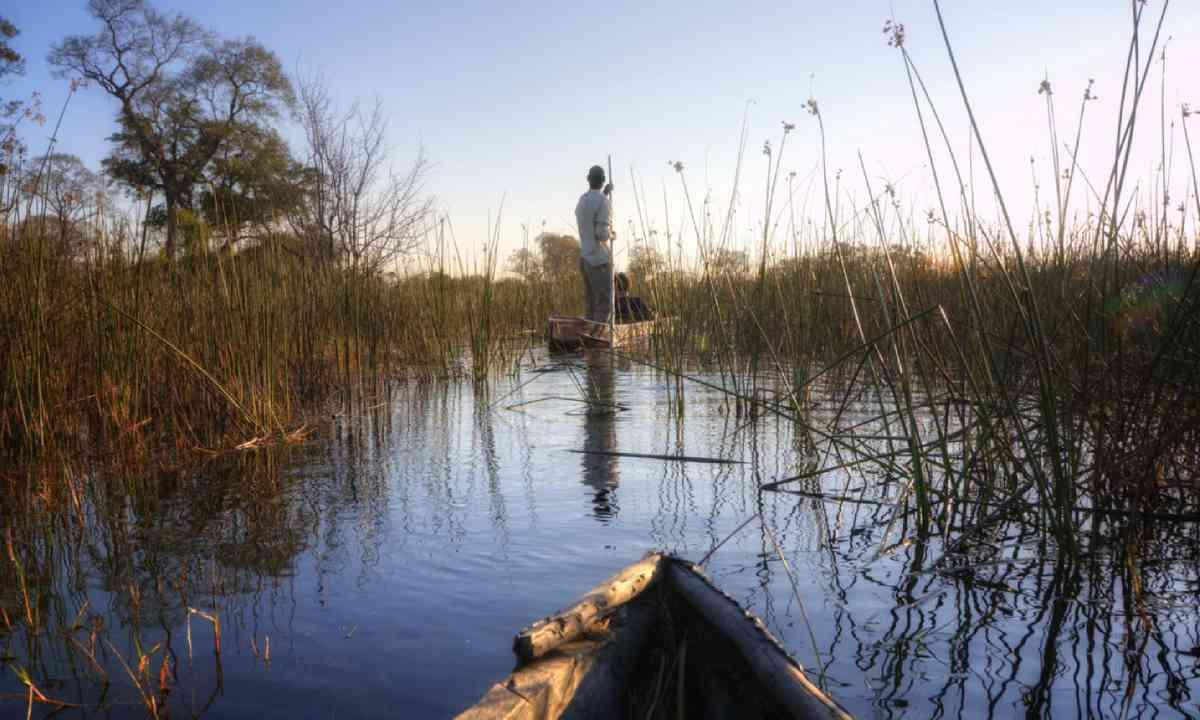 Okavango Delta (Shutterstock)