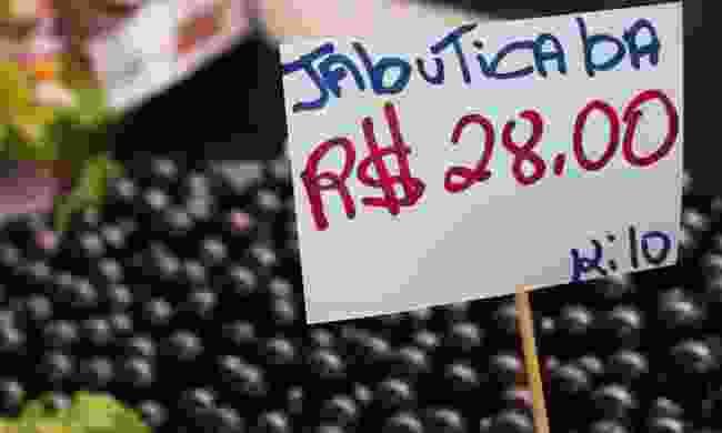 Jaboticaba fruits (Shutterstock)